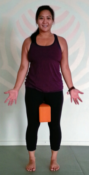 yoga-block-between-the-thighs